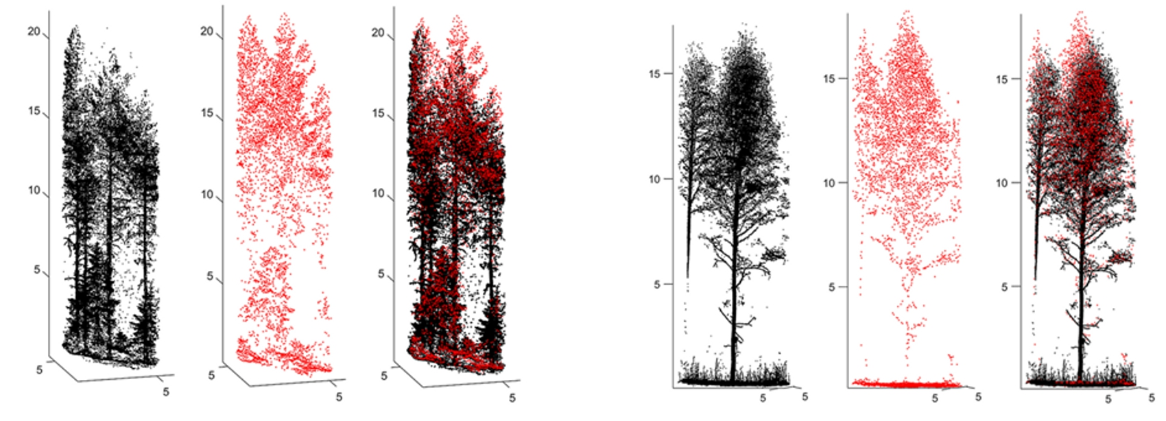 ALS pointcloud of trees