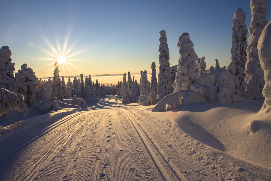 A winter road in Lapland.